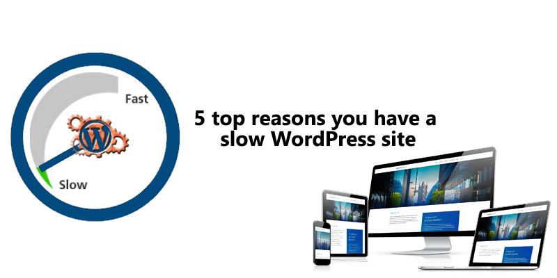 top 5 reasons you have a slow WordPress Site